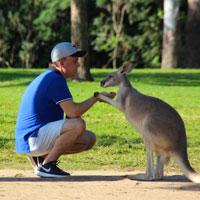 Kangaroo Park Near Brisbane